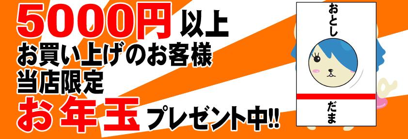 http://osaka-nihonbashi.anihiro.jp/images/2013010901.jpg